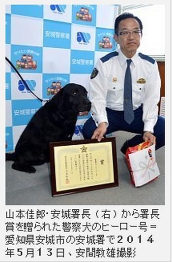 愛知の警察犬 行方不明認知症の77歳女性を匂いで発見!その間15分ほど