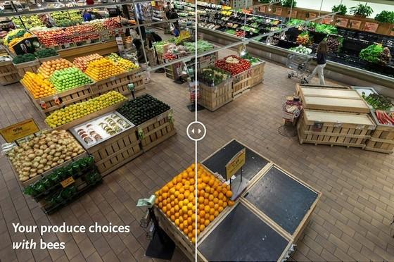 もしハチやチョウ等の花粉媒介昆虫が地球上からいなくなったら、スーパーマーケットはなくなる!?