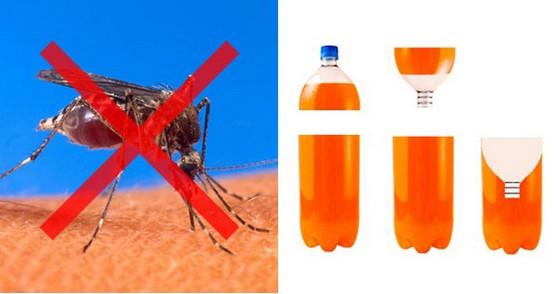 この夏必須!?数万人の命を救った「蚊取りペットボトル」の秘訣!!フィリピンから【動画有】