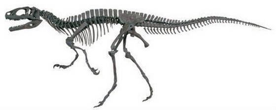 恐竜カフェ 恐竜博物館と東急ハンズがコラボ
