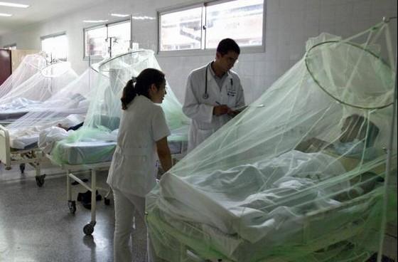 デング熱の国内感染3人に増加!?同じ学校の男女が代々木公園で蚊に刺されたのが原因?