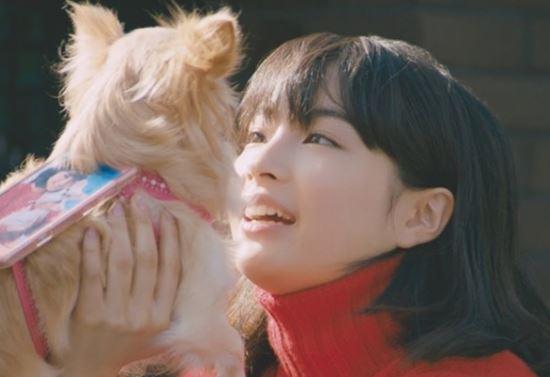 【動画】広瀬すず、cmでチワワと共演「可愛いすぎる」と絶賛 フジカラー写真年賀状PR動画